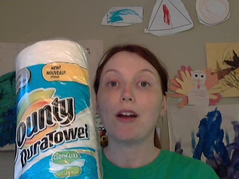 Bounty DuraTowels are great.